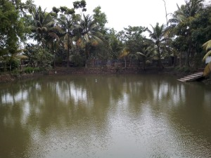 picnic spot near kolkata2